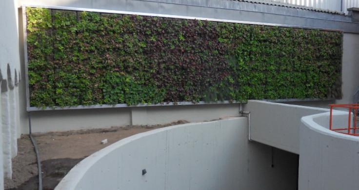 Groengevel door Green Building Projects
